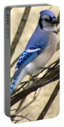 Blue Jay In A Bush Portable Battery Charger