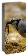 Blue Jay Nest Building Portable Battery Charger