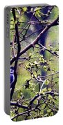 Blue Jay - Paint Effect Portable Battery Charger