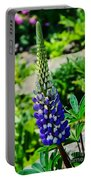 Blue Lupins Portable Battery Charger