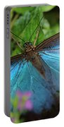 Blue Morpho Portable Battery Charger
