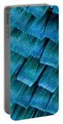 Blue Morpho Wing Scales Portable Battery Charger