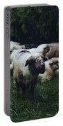 Blue Mountain Sheep Portable Battery Charger