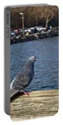 Blue Pigeon Portable Battery Charger
