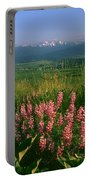 M-05925-blue Pod Lupine And Wallowa Mountain Portable Battery Charger