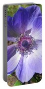 Blue Poppy Anemone Portable Battery Charger