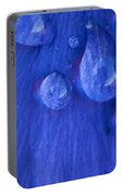Blue Rain Portable Battery Charger
