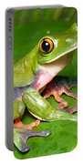 Blue-sided Tree Frog Portable Battery Charger