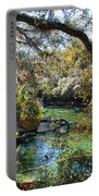 Blue Springs 1 Portable Battery Charger