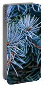 Blue Spruce Portable Battery Charger