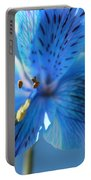 Blue Summer Portable Battery Charger
