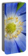 Blue Swan River Daisy Portable Battery Charger