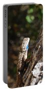 Blue Throated Lizard 4 Portable Battery Charger