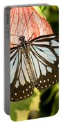 Blue Tiger Butterfly Portable Battery Charger