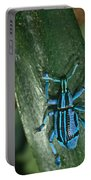 Blue Tropical Weevil Portable Battery Charger