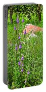 Blue Vervain And Rocks In Pipestone National Monument-minnesota  Portable Battery Charger