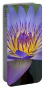 Blue Water Lily - Nymphaea Portable Battery Charger by Heiko Koehrer-Wagner