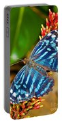 Blue Wave Butterfly Portable Battery Charger
