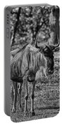 Blue Wildebeest-black And White Portable Battery Charger