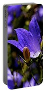 Bluebell Portable Battery Charger