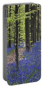 Bluebells In Beech Forest Portable Battery Charger