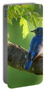 Bluebird In The Morning Portable Battery Charger