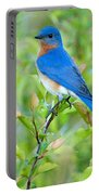 Bluebird Joy Portable Battery Charger
