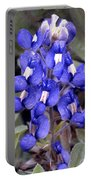 Bluebonnet I I I Portable Battery Charger