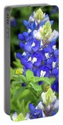 Bluebonnets Blooming Portable Battery Charger