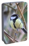 Bluetit Portable Battery Charger