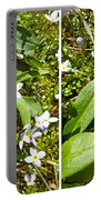 Bluets In Stereo Portable Battery Charger