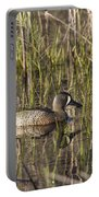 Bluewing Teal Portable Battery Charger