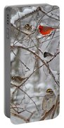 Blushing Red Cardinal In The Snow Portable Battery Charger