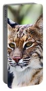 Bob Cat Pose Portable Battery Charger