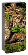 Bobcat At Sunset Portable Battery Charger