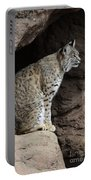 Bobcat Portable Battery Charger by Bob Christopher