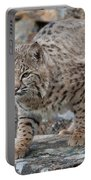 Bobcat On Rock Portable Battery Charger