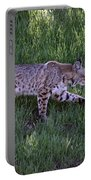 Bobcat On The Move Portable Battery Charger