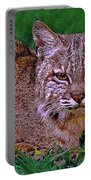 Bobcat Sedona Wilderness Portable Battery Charger