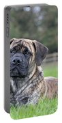 Boerboel Dog Portable Battery Charger