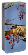 Bohemian Waxwing Eating Rowan Berries Portable Battery Charger