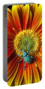 Boll Weevil On Mum Portable Battery Charger