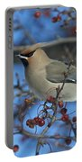 Bombycilla Garrulus... Portable Battery Charger