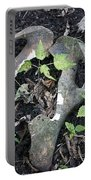 Bones On The Forest Floor Portable Battery Charger