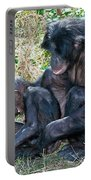 Bonobo Adult Tickeling Juvenile Portable Battery Charger