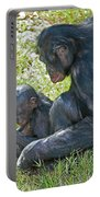 Bonobo Mother And Baby Portable Battery Charger
