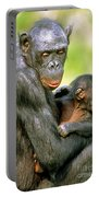 Bonobo Pan Paniscus Mother And Infant Portable Battery Charger