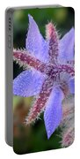 Borage Droplets Portable Battery Charger