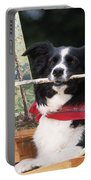 Border Collie At Painting Easel Portable Battery Charger