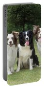 Border Collie Dogs Portable Battery Charger
